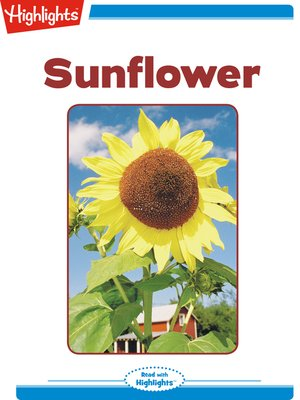 cover image of Sunflower