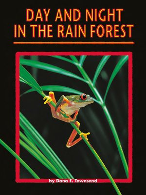 cover image of Day and Night in the Rain Forest