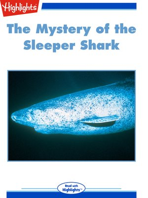 cover image of The Mystery of the Sleeper Shark