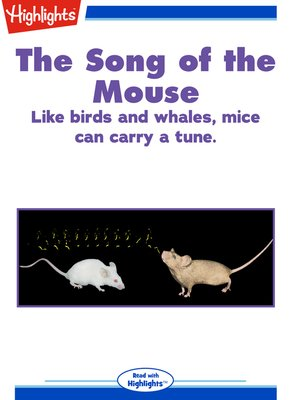 cover image of The Song of the Mouse