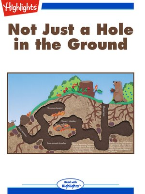 cover image of Not Just a Hole in the Ground