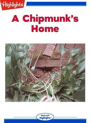 cover image of A Chipmunk's Home