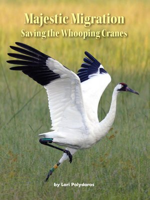 cover image of Majestic Migration