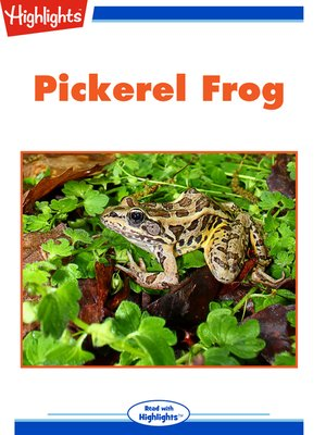 cover image of Nature Watch: Pickerel Frog; Spot the Imposter