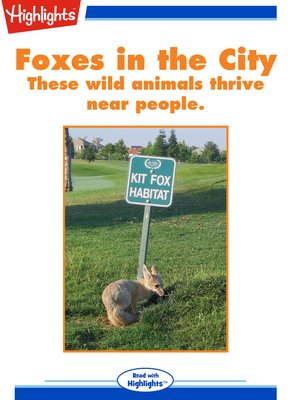 cover image of Foxes in the City