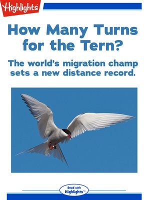 cover image of How Many Turns for the Tern?