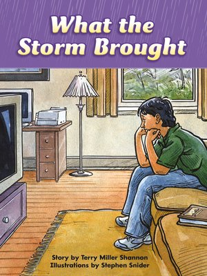 cover image of What the Storm Brought