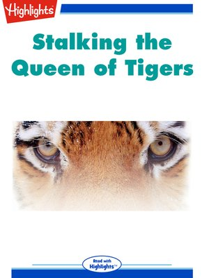 cover image of Stalking The Queen of Tigers
