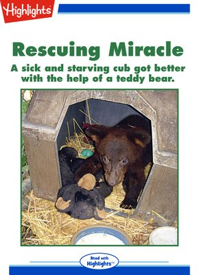 cover image of Rescuing Miracle