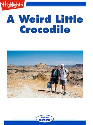 cover image of A Weird Little Crocodile