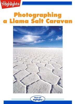 cover image of Photographing a Llama Salt Caravan