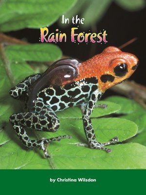 cover image of In the Rain Forest