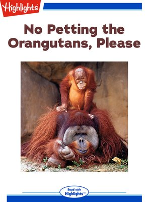 cover image of No Petting the Orangutans Please