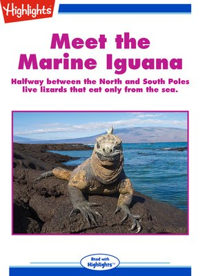 cover image of Meet the Marine Iguana