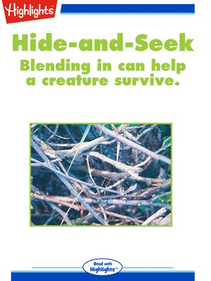 cover image of Hide-and-Seek
