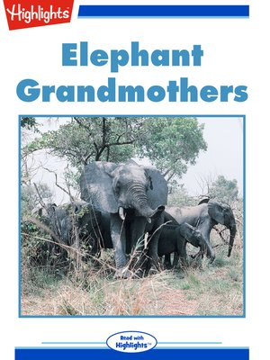 cover image of Elephant Grandmothers