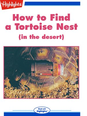 cover image of How to Find a Tortoise Nest