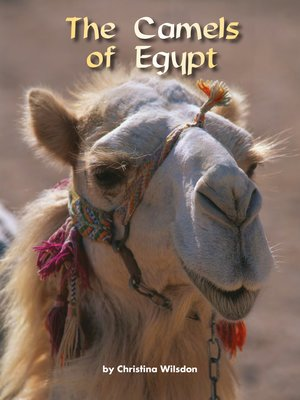 cover image of The Camels of Egypt