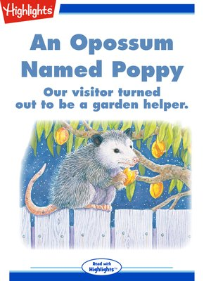 cover image of An Opossum Named Poppy