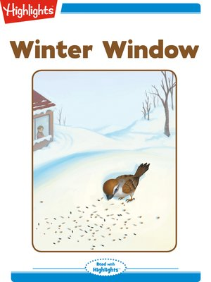 cover image of Winter Window