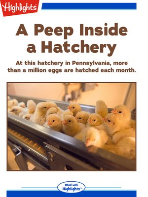 cover image of A Peep Inside a Hatchery