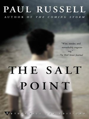 cover image of The Salt Point