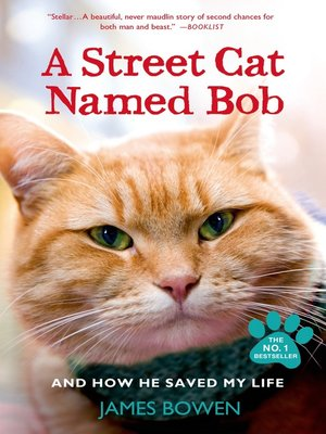 cover image of A Street Cat Named Bob