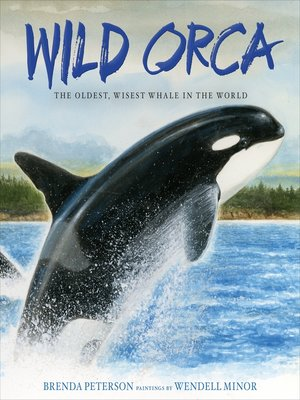 cover image of Wild Orca