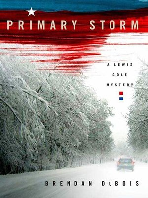 cover image of Primary Storm