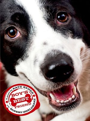 cover image of Boy's Best Friend