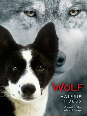 cover image of Wolf