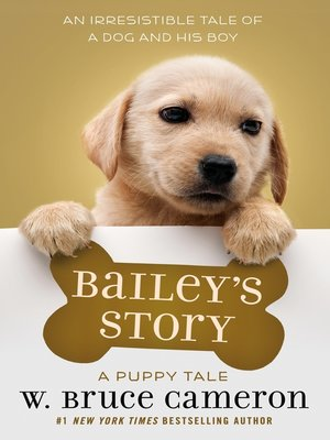 cover image of Bailey's Story