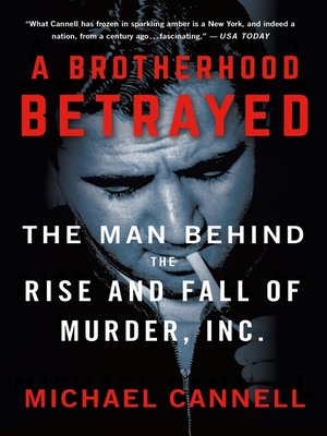 cover image of A Brotherhood Betrayed