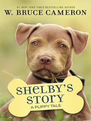 cover image of Shelby's Story