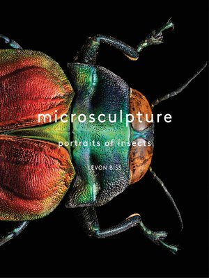 cover image of Microsculpture