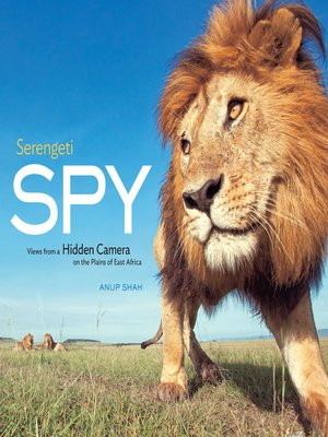 cover image of Serengeti Spy