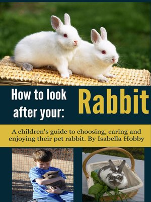 cover image of How to Look After Your Rabbit