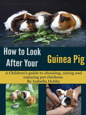 cover image of How to Look After Your Guinea Pig