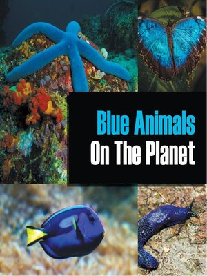 cover image of Blue Animals On the Planet