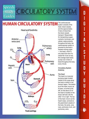 cover image of Circulatory System