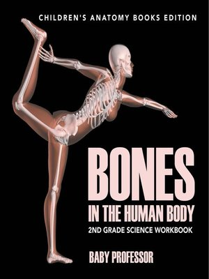 cover image of Bones in the Human Body--2nd Grade Science Workbook--Children's Anatomy Books Edition