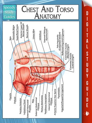 Chest and Torso Anatomy by Speedy Publishing · OverDrive (Rakuten ...
