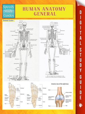 cover image of Human Anatomy (General)