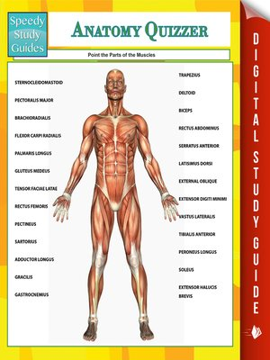 cover image of Anatomy Quizzer