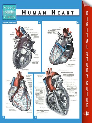 cover image of Human Heart