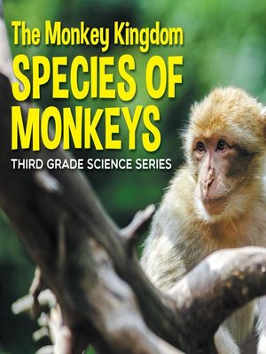 cover image of The Monkey Kingdom (Species of Monkeys) --3rd Grade Science Series