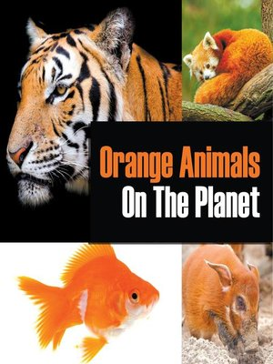 cover image of Orange Animals On the Planet