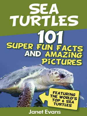 cover image of Sea Turtles: 101 Super Fun Facts and Amazing Pictures