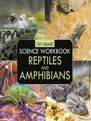 cover image of 1st Grade Science Workbook--Reptiles and Amphibians