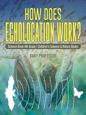 cover image of How Does Echolocation Work? Science Book 4th Grade--Children's Science & Nature Books